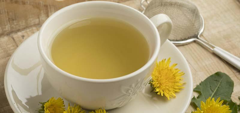 ceaiul-de-papadie